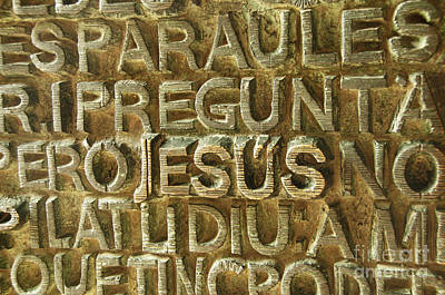 Photograph - Wall Of Jesus Sagrada Familia  by Cindy Lee Longhini