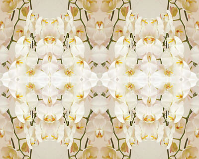 Photograph - Wall Of Orchids II by Paul Ashby