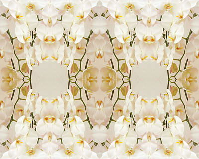 Photograph - Wall Of Orchids by Paul Ashby