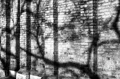 Photograph - Wall Patterns In Venice by John Rizzuto