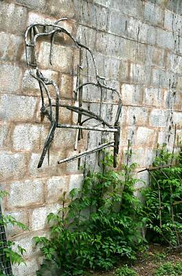 Photograph - Garden Wall by Terry Burgess