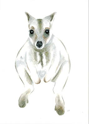Marsupial Drawing - Wallaby I by Jennie Richards