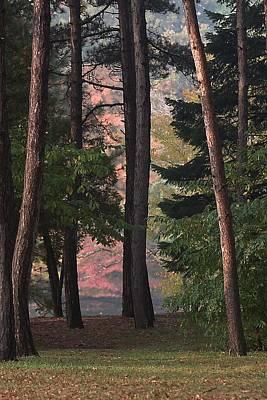Berea Wall Art - Photograph - Wallace Lake Berea Ohio Fall Colors by John Harmon