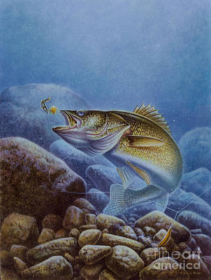 Walleye And Lindy Art Print by Jon Q Wright
