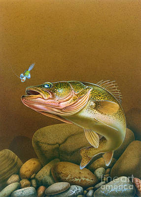 Walleye And Spinner Jig Art Print by Jon Q Wright