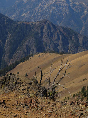 Photograph - Wallowa Ridge by Jacqueline  DiAnne Wasson