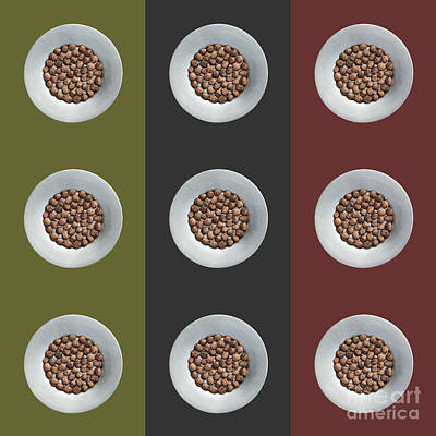 Walnut 3x3 Collage 4 Art Print