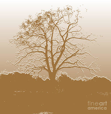 Digital Art - Walnut Tree Series Plaster Golden by Conni Schaftenaar
