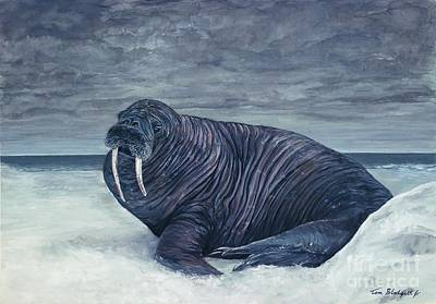 Painting - Walrus by Tom Blodgett Jr