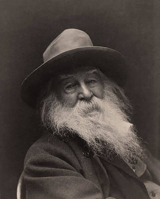 Walt Whitman 1886 Print by Mountain Dreams