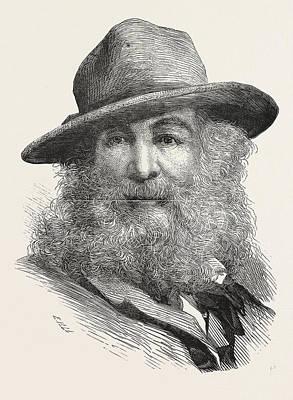 Whitman Drawing - Walt Whitman, May 31, 1819  March 26, 1892, Was An American by American School