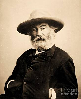 Photograph - Walt Whitman by Pg Reproductions