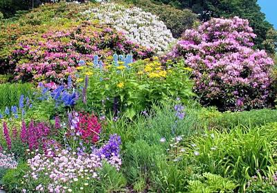 Photograph - Walter Peak Garden by Jane Girardot