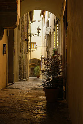 Photograph - Wandering Around The Lanes And Alleys Of Florence Italy by Georgia Mizuleva