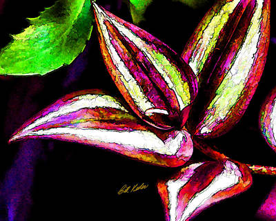 Photograph - Wandering Jew - Artistic by Bill Kesler