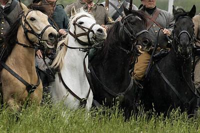 Photograph - War Horses by David Lester