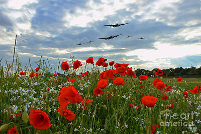 Poppies Field Digital Art - Warbirds Remembrance  by J Biggadike
