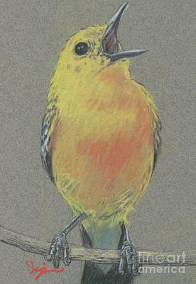 Warbler Original by Suzie Majikol Maier