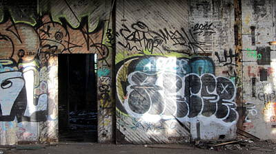 Photograph - Warehouse Graffiti Door 1 by Anita Burgermeister