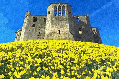 Photograph - Warkworth Castle Daffodils Photo Art by Les Bell