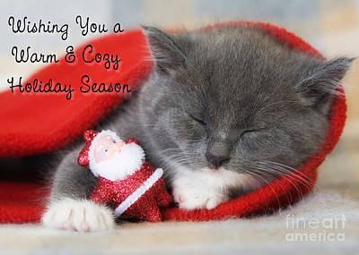 Digital Art - Warm Cozy Kitty Christmas by JH Designs