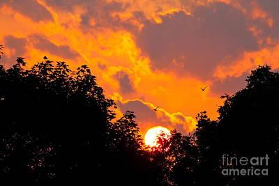 Warm Summer Sunset Art Print by Jay Nodianos
