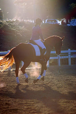 Hanovarian Dressage Horse Photograph - Warm Up by Kelly Wright
