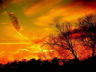Warm Winter Sunset  Art Print by Walter  Holland