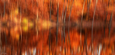 Red Maple Trees Photograph - Warmth Impression by Lourry Legarde