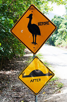 Warning Sign At The Roadside, Cape Print by Panoramic Images