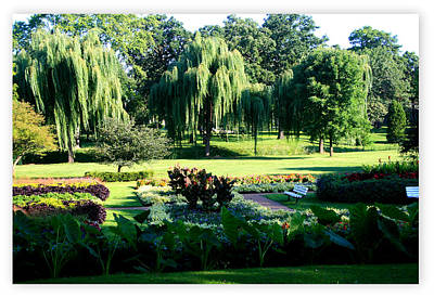 Photograph - Warren J. Taylor Sunken Garden by Kay Novy