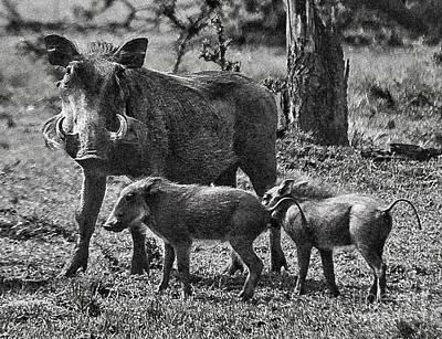 Warthog Family  Art Print by Gary Keesler
