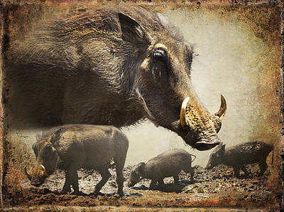 Warthog Profile Art Print by Ronel Broderick