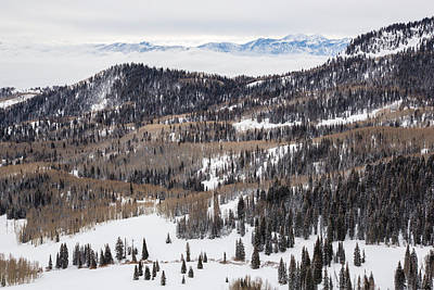 Photograph - Wasatch Winter by Adam Pender