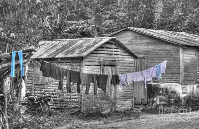 Photograph - Washday by David Birchall