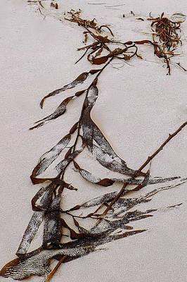 Washed-up Art-  20 Art Print
