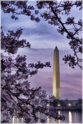 Photograph - Washington Cherry Blossoms by Erika Fawcett