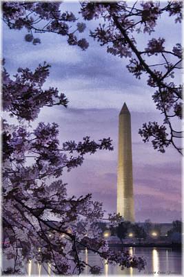 Photograph - Washington Cherry Blossoms by Erika Fawcett