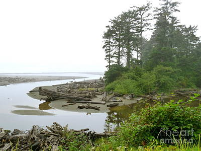 Photograph - Washington Coast At The Kalaloch Lodge by Terri Thompson