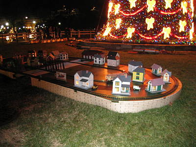 Xmas Photograph - Washington Dc - Christmas At The Ellipse - 12124 by DC Photographer