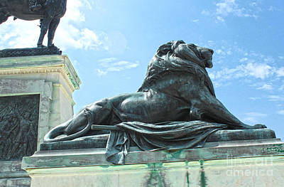 Photograph - Washington Dc Lion Statue by Gregory Dyer