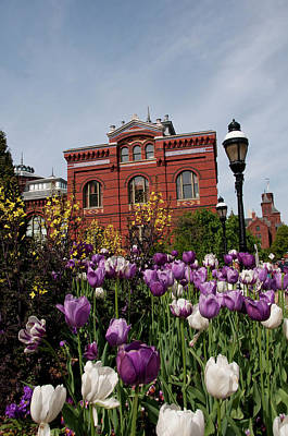 Smithsonian Photograph - Washington Dc, Tulips At The Smithsonian by Lee Foster