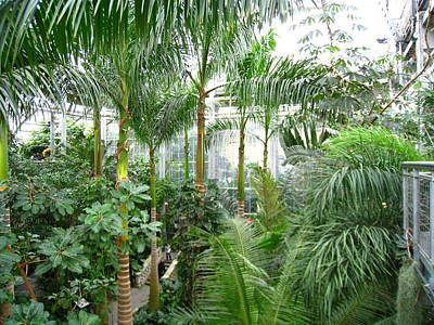 Washington Dc - Us Botanic Garden. - 121227 Art Print