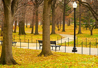 Photograph - Washington Dc's Memorial Parks In The Winter by MaryJane Armstrong