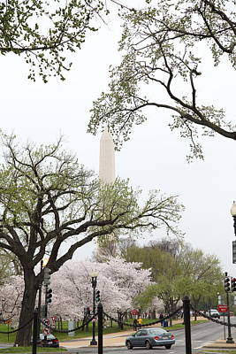 Metropolitan Photograph - Washington Monument - Cherry Blossoms - Washington Dc - 011346 by DC Photographer