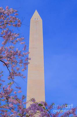 Photograph - Washington Monument In The Lap Of Cherry Blossoms by Jeff at JSJ Photography