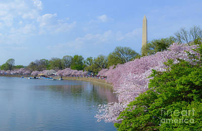 Photograph - Washington Monument On The Basin Blossoms by Jeff at JSJ Photography