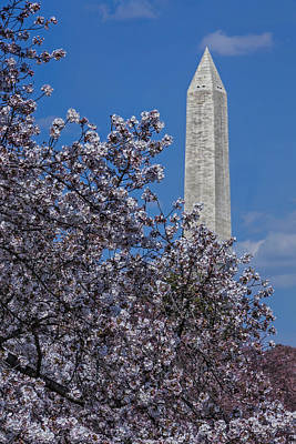 Washington Monument Photograph - Washington Monument by Susan Candelario