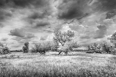 Battlefield Site Photograph - Washita by Harry H Hicklin