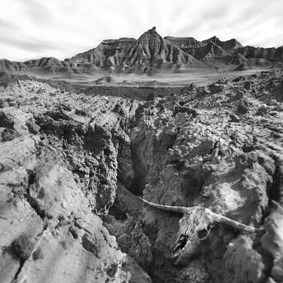 Skull Photograph - Wasteland by Mike McGlothlen